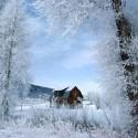 hiver-givre
