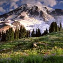 montagne-printemps