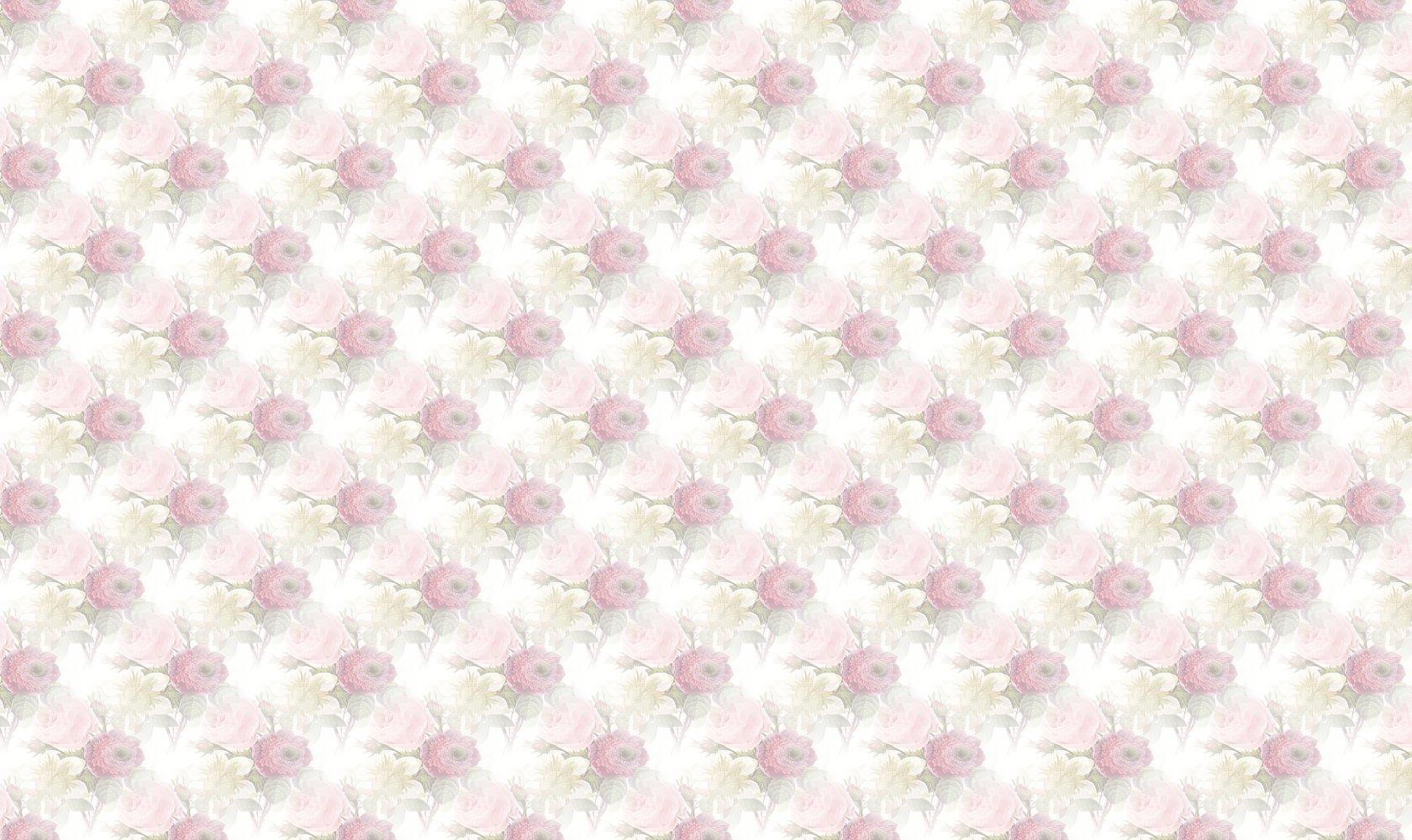 Janines-1680-1000.jpg
