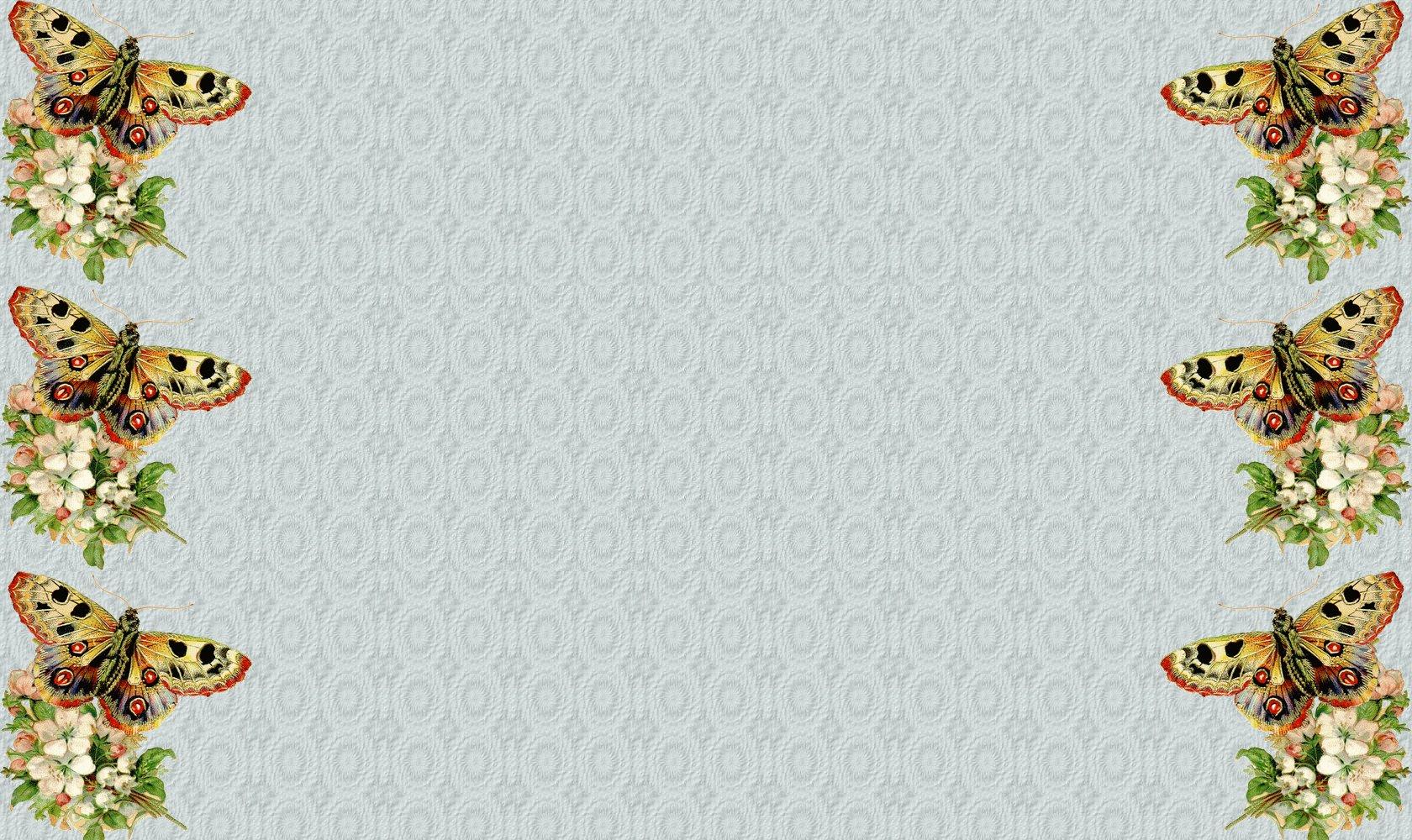 fond-papillon-1680-1000.jpg